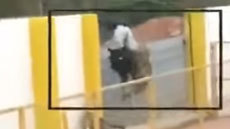 สุดระทึก ! คลิป จับเสือดาวที่อินเดีย แต่พลาดโดนขย้ำบาดเจ็บ 6 ราย